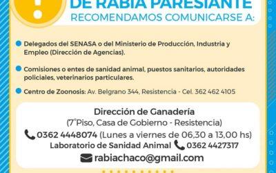 RABIA PARESIANTE: EL GOBIERNO PROVINCIAL RECOMIENDA A PRODUCTORES DENUNCIAR CASOS Y VACUNAR LOS RODEOS TODOS LOS AÑOS